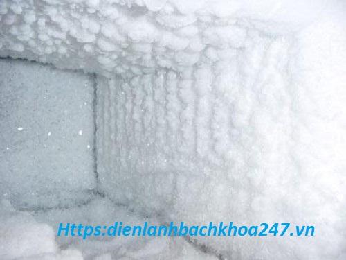 hướng dẫn xả tuyết tủ đông